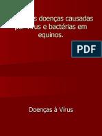 a6 Doencas Causadas Por Virus e Bacterias