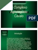 A7 Complexo Agronegocio Cavalo