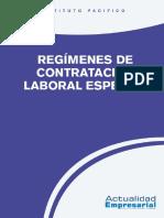 2015_lab_08_contratacion_laboral_especial.pdf