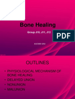 Bone Healing Presentation Adited