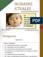 2.DISCAPACIDADES-INTELECTUALES