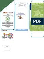 leaflet difteri1.doc