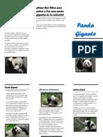 panda.docx