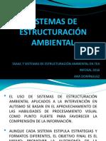 Sistemas de Estructuración Ambiental