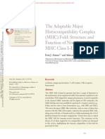 The Adaptable MHC Fold. Structure and Function of Nonclassical and MHC Class I-like Molecules.
