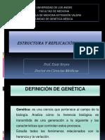 Estructura y Replicación Del ADN