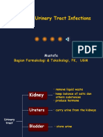Drug Urinary Tract Infections Mus