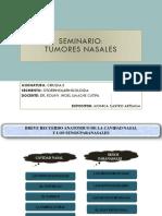 Seminario Otorrino Tumores Nasales
