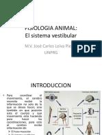 El Sistema Vetibular V2