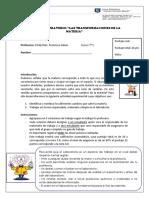 Laboratorio CAMBIOS FÍSICOS Y QUÍMICOS DE LA MATERIA.docx