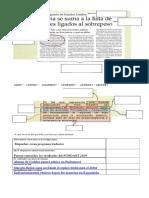 Completar Estructura de La Noticia