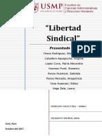 Derecho Colectivo (Monografia)