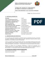 Informe Tecnico Del Empedrado