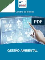 Livro_GestaoAmbiental