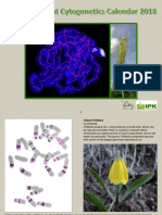 Cytogenetics Calender 2018