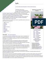 Hydrangea Macrophylla – Wikipédia, A Enciclopédia Livre