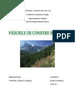 Padurile de Conifere Boreale