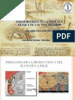 Enfermedades de La Vescula Biliar y de Las Vias Biliares 1227158821845810 8