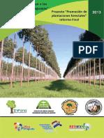 Proyecto Promocion Inversion Plantaciones