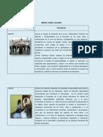 ENTRADA N°1 IDENTIDAD INSTITUCIONALVISION MISION Y VALORES