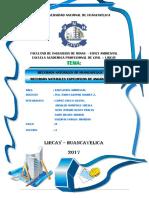 Universidad Nacional de Huancavelica Ambiental.docx 3333333333