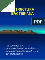 1estructurabacteriana-140105165152-phpapp01
