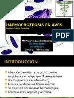 Haemoproteosis en Aves