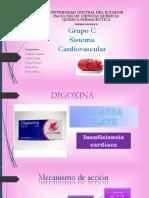4.GRUPO C Sistema Cardiovascular