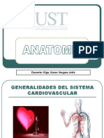 1. Generalidades Del Sistema Cardiovascular