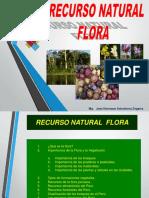 5S-1C_FLORA