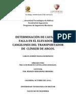 Determinación de Las Causas de Falla en El Elevador de Cangilones Del Transportador de Clínker de Argos