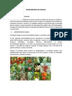 1 Trabajo -Biodiversidad de Chiapas- Vianny