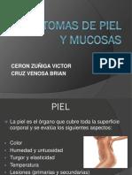 Sintomas de Piel y Mucosas