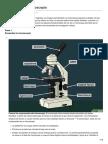 Cómo Usar Un Microscopio