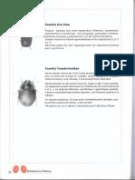 Libro Entomología Sandrainesuribesoto.2014_Parte2