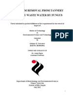 Chromium Removal From Tannery Industry Waste Water by Fungus