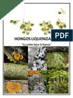 HONGOS_ LIQUENIZADOS.pdf