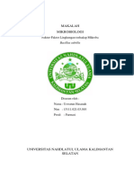 MAKALAH BACILLUS SUBTILIS.docx