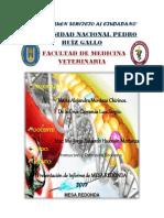 Mesa Redonda Informe