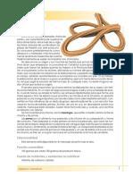 churros.pdf