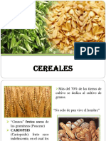 2 cereales 2014