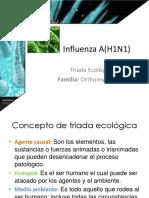 influenzaah1n1-120924205251-phpapp02