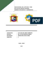 Informe Topo Iiigrtc