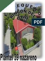Publicación324