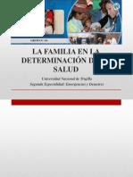 La Familia en La Determinación de La Salud