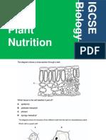 IGCSE Practice Questions - Plant Nutrition