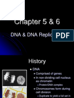 A. Chapter 5 & 6 - DNA & DNA Replication