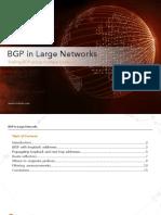 BGP-in-Large-Networks.pdf