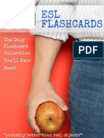670-ESL-Flashcards-Manual.pdf