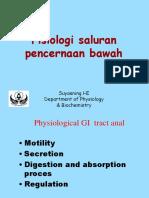 Fisiologi Sal Pencernaan Bawah